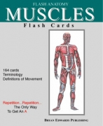 Muscles-Flash Cards