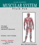 Muscular System-Flash Paks