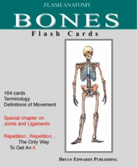 Bones-Flash Cards