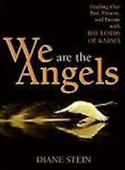 We Are the Angels: Healing your past by Diane Stein