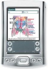 Qpalm-Acupuncture 1.0 - For Palm