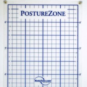 posture zone posture assessment grid wall mount