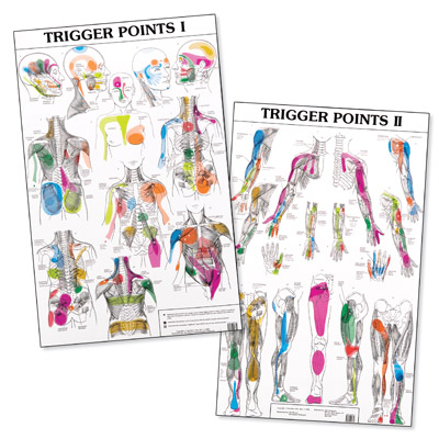 Trigger Point Charts I And Ii Charts 1989