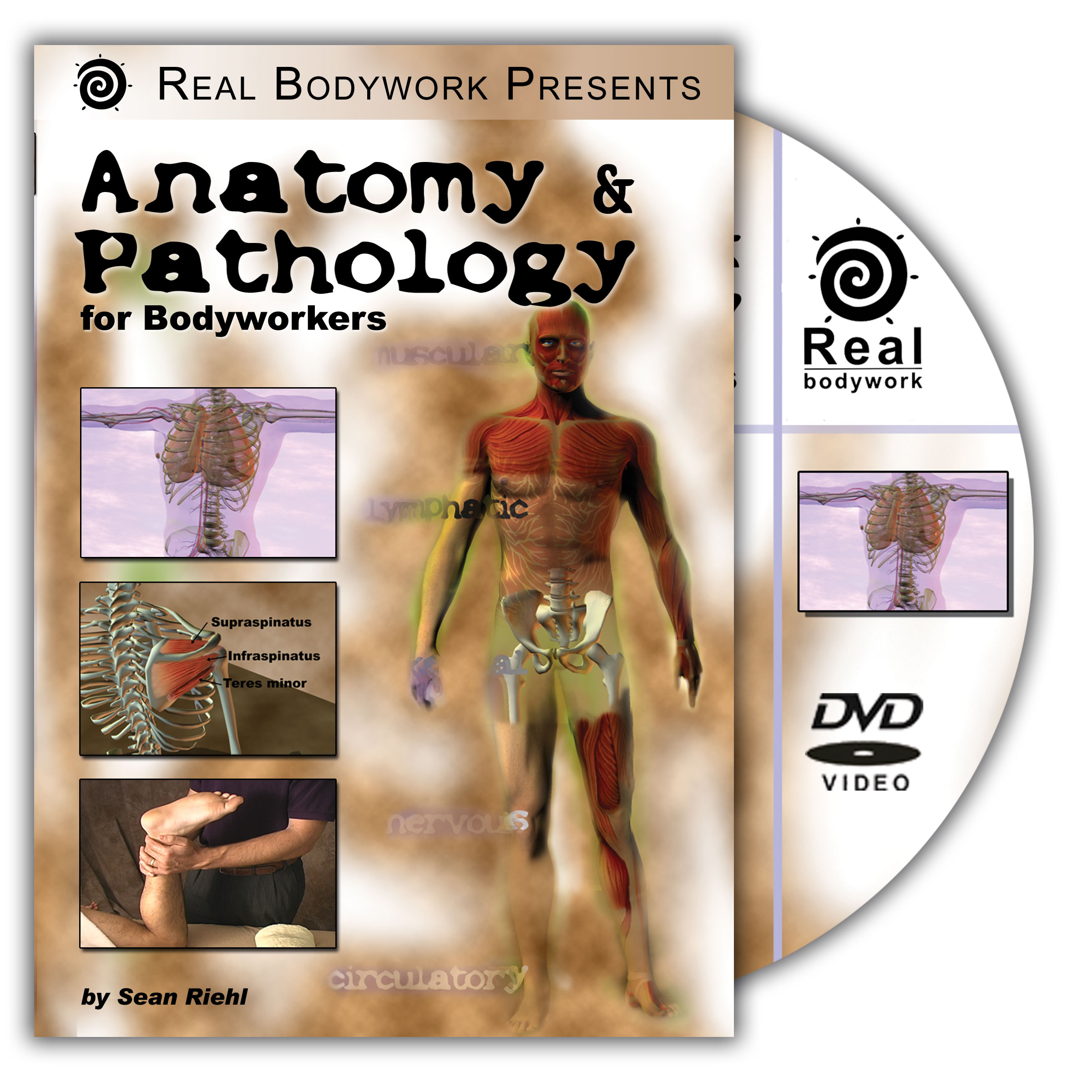 Anatomy Pathology For Bodyworkers Videos Dvds B0002us50u