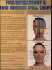 Face Reflexology & Face Reading Wall Chart