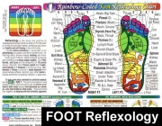 Foot Reflexology Massage Chart
