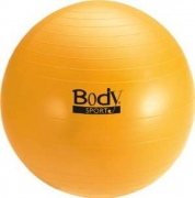 Body Sport Fitness Ball 65cm