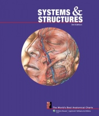 System & Structures Chart Book