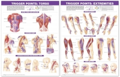 Trigger Point Chart Set Torso and Extremeties