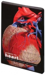 Exploring the Heart CD-ROM: A 3D of Anatomy and Pathology