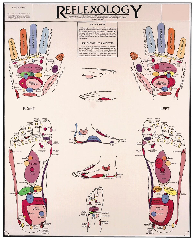 Reflexology Hands & Feet Chart - Flexible Lamination ...
